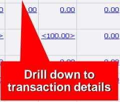 Drill down to transaction details