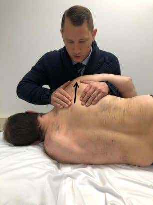 SC Joint – Protraction and Retraction • All ST techniques: pillow between you and patient •