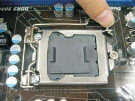 Step 2. Remove the PnP Cap (Pick and Place Cap). 1. It is recommended to use