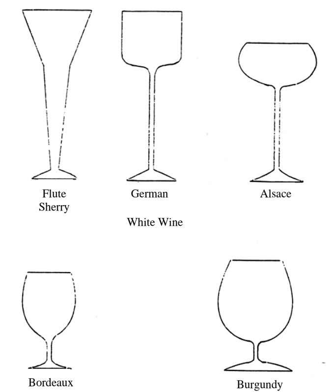 Flute German Alsace Sherry White Wine Bordeaux Burgundy
