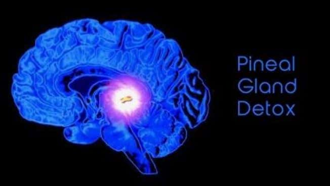 of the Third Eye (Pineal Gland) OCTOBER 24, 2013 BY JOSE The pineal gland (also called