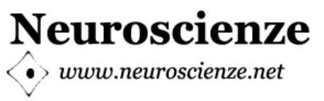 Pensare l'Arte ©2009 Neuroscienze.net Journal of Neuroscience, Psychology and Cognitive Science On-line date: