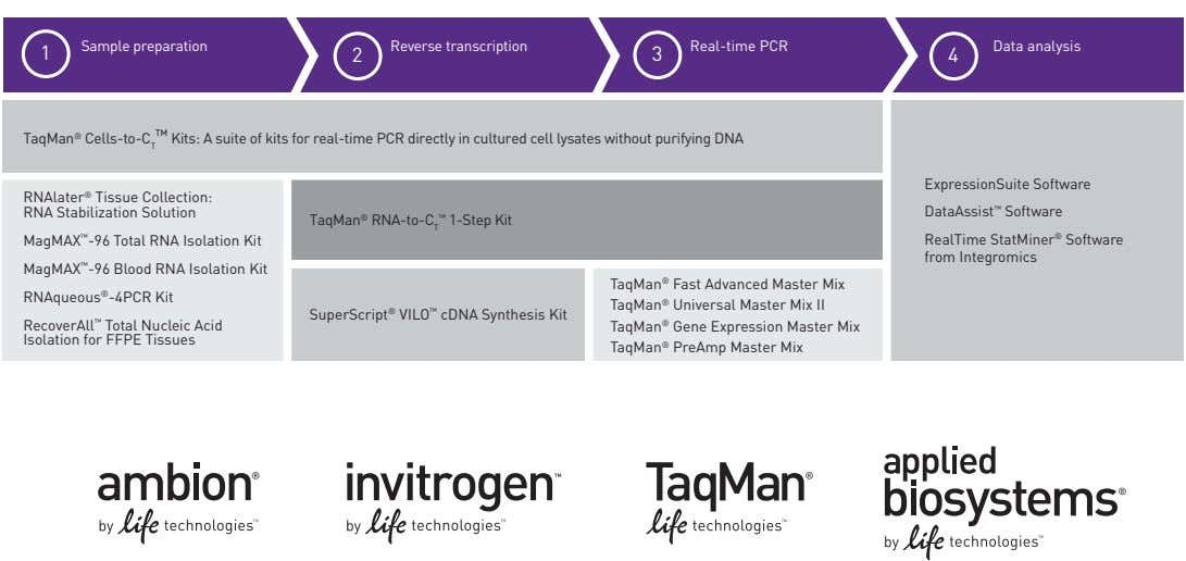 1 Sample preparation 2 Reverse transcription 3 Real-time PCR 4 Data analysis TaqMan ® Cells-to-C