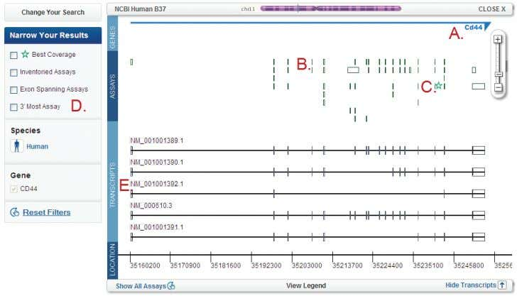 transcripts that map to the gene locus, showing exon usage. The TaqMan ® Assays QPCR Guarantee