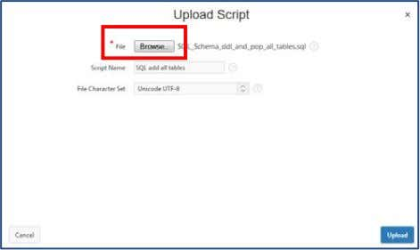 page. Click Browse and navigate to the file on your PC. Add a Script Name, leave