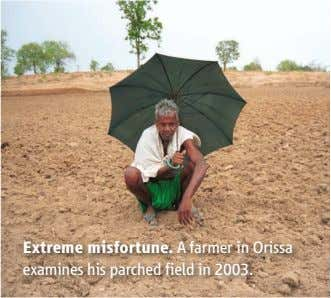 Extreme misfortune. A farmer in Orissa examines his parched field in 2003.
