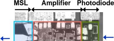 MSL Amplifier Photodiode