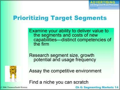 Prioritizing Target Segments Examine your ability to deliver value to the segments and costs of