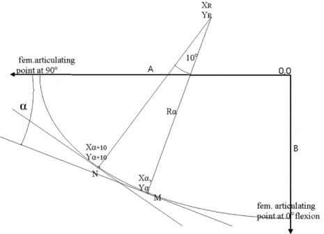 each 10° segment, from 0° up to 90° articulating point. Fig. 4. Radius of condylar curve