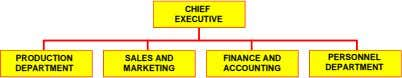 CHIEF EXECUTIVE PRODUCTION SALES AND FINANCE AND PERSONNEL DEPARTMENT MARKETING ACCOUNTING DEPARTMENT