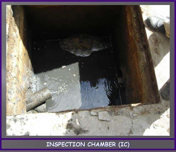 INSPECTION CHAMBER (IC)
