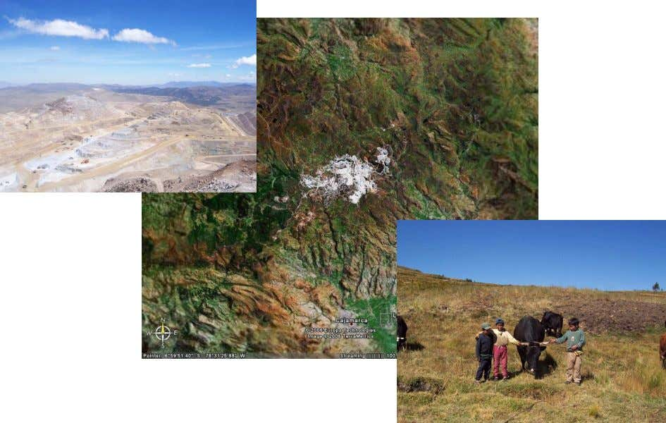 Peruvian Andes A Case Study in The Yanacocha Mine, Cajamarca Hildebrando Palacios-Berrios Thesis Submitted in partial