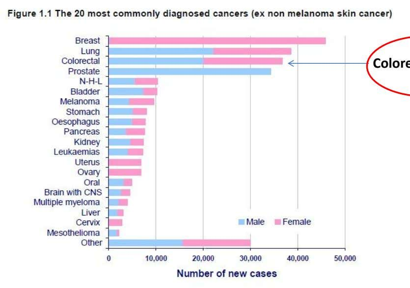 Each year around 289,000 people are newly diagnosed with cancer and breast, lung, colorectal and prostate