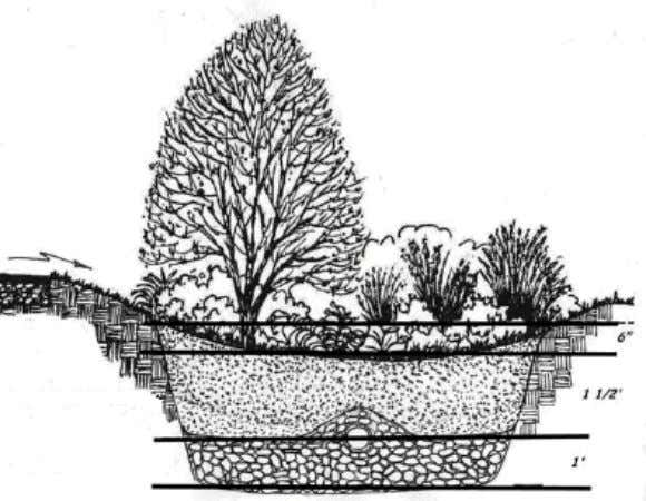 Rain Garden Design and Construction Guidelines 18 Figure 9 Sizing of a bioretention cell designed by