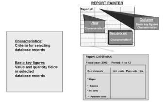with Report Painter Lesson 1 – Structuring Reports  To define a report, you must determine