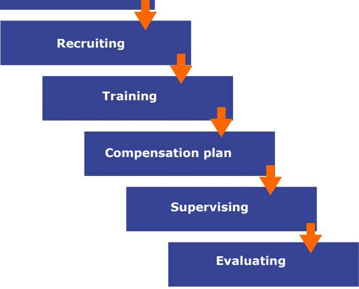Recruiting Training Compensation plan Supervising Evaluating