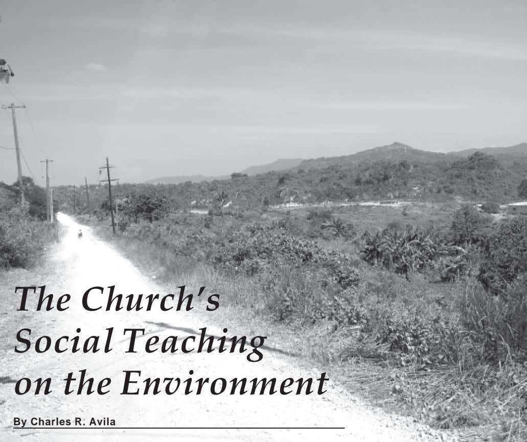 The Church's Social Teaching on the Environment By Charles R. Avila