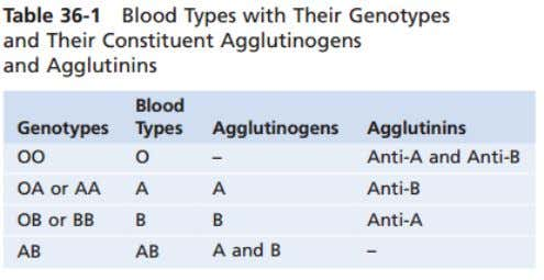 agglutinogens on the cells There are 6 possible alleles in your blood typing SINO KAYA MAS
