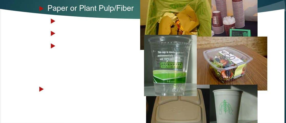  Paper or Plant Pulp/Fiber  Recycled Paper  Bagasse/Sugarcane  Poly coated paper allowed for