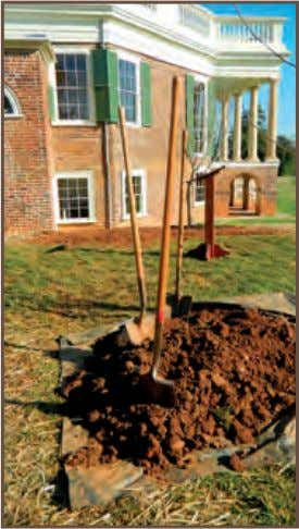 Paper Mulberry Tree Planting at Poplar Forest, Bedford County sponsors a maintenance workshop for the GCV