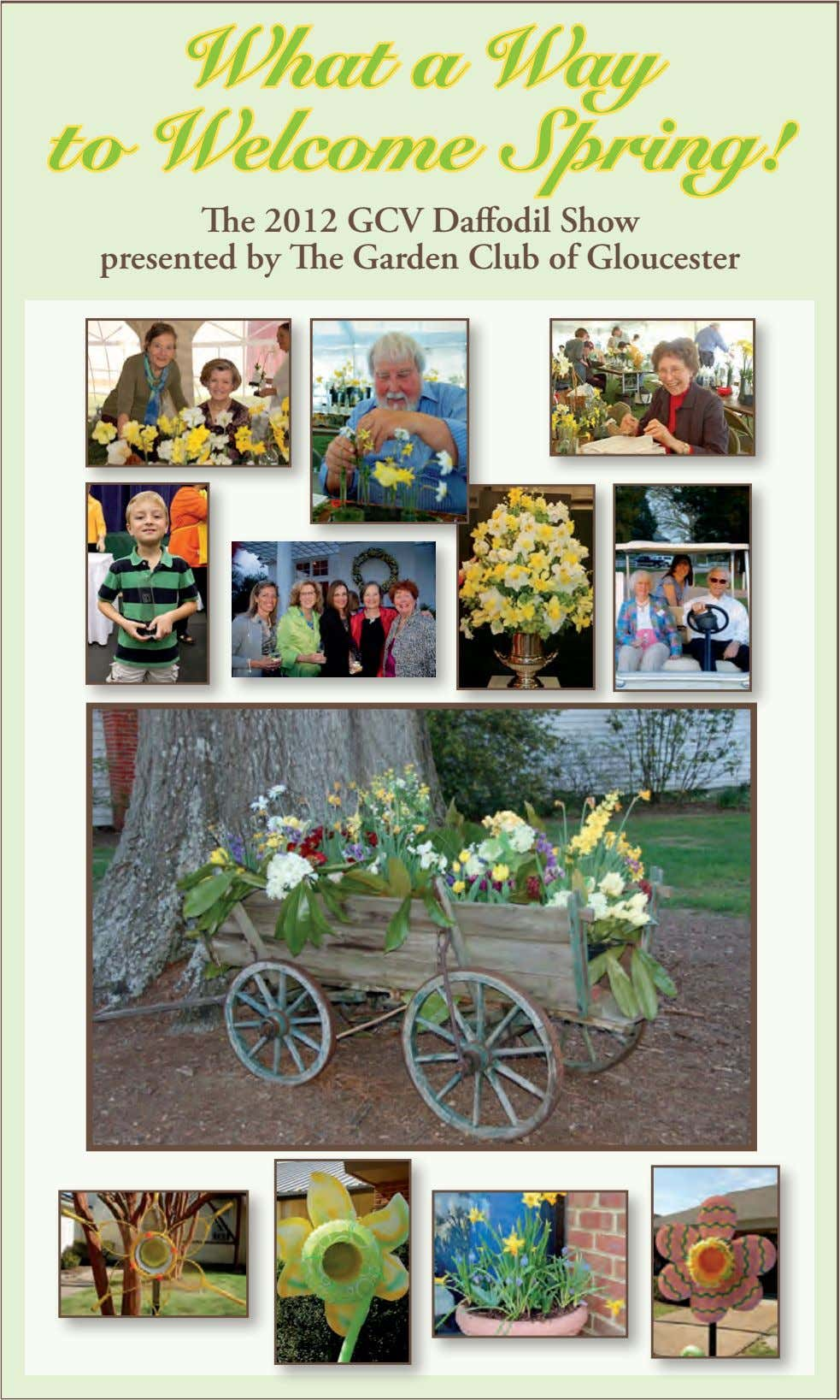 What a Way to Welcome Spring! The 2012 GCV Daffodil Show presented by The Garden Club