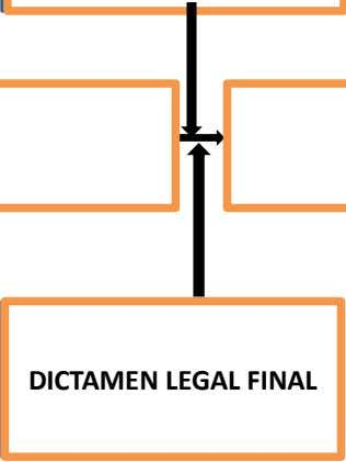 DICTAMEN LEGAL DICTAMEN LEGAL FINAL FINAL