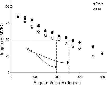 the torque plateau of a MVIC. The peak torque generated Fig. 1. Force-velocity relationships in young