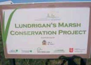 this environment. What are some examples in your community? Figure 1.4: Lundrigan's Marsh, an urban greenspace.