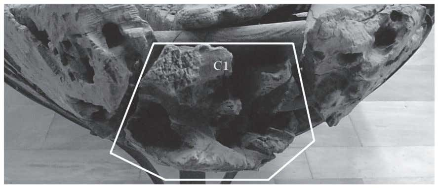 an elongated honeycomb-like construction (see fig. 4a). Fig. 14. 'Keystone' at the bow of gC 4926,
