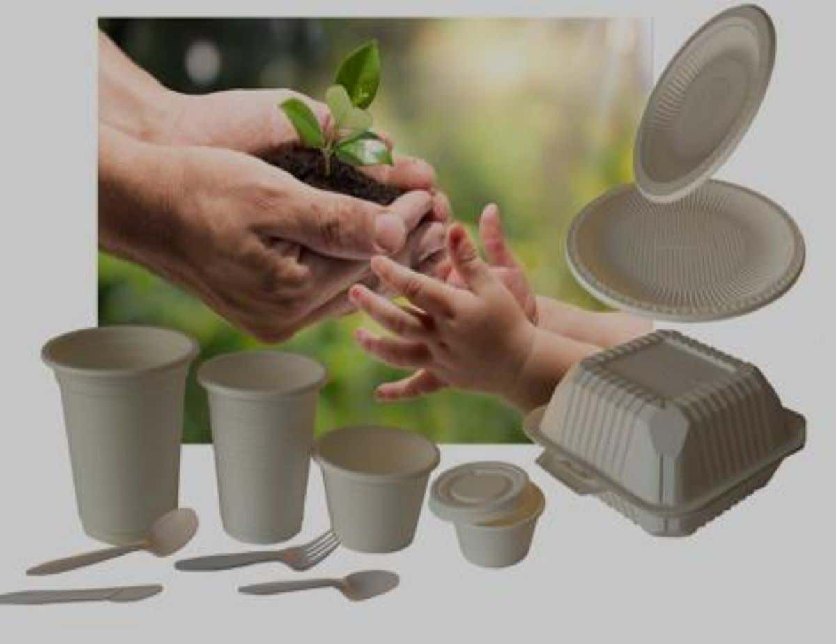 Biodegradable,elretodelempaque. delaIndustriaAlimenticia. ThermoformedProducts