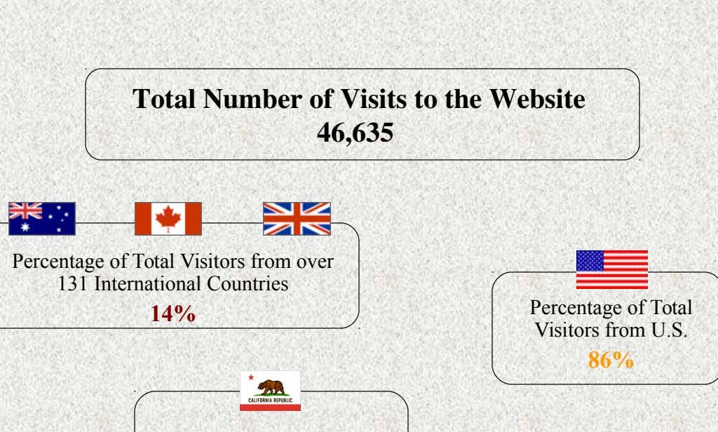 Total Number of Visits to the Website 46,635 Percentage of Total Visitors from over 131 International