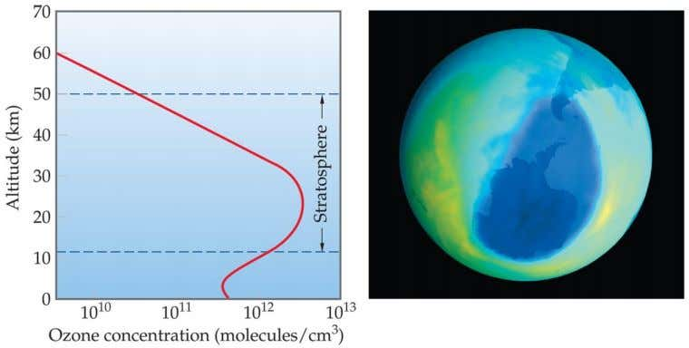 Ozone Depletion In 1974 Rowland and Molina (Nobel Prize, 1995) discovered that chlorine from chlorofluorocarbons (CFCs)