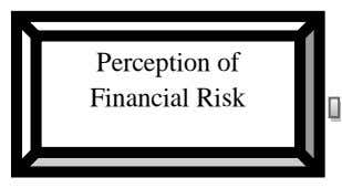 Perception of Financial Risk