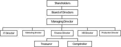 Shareholders Board of Directors Managing Director IT Director Marketing director Finance Director HR Director Production Director