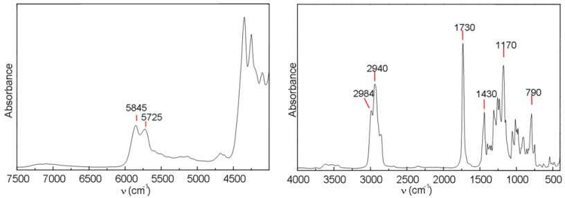 -1 ) of esters, which can be useful for identification. Fig. 5. FTIR spectra of ECC