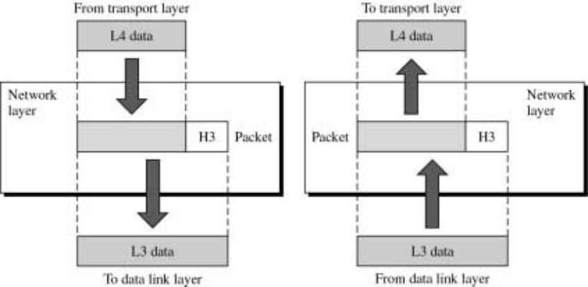 role in getting the packet from source to destination. The figure shows the relationship between the