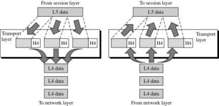 session layer at the top and network layer at the bottom. It can be observed that