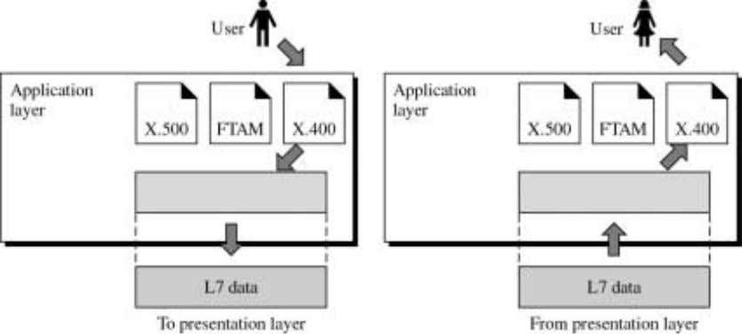 server. The Figure shows the relationship of the application layer to the user and the presentation