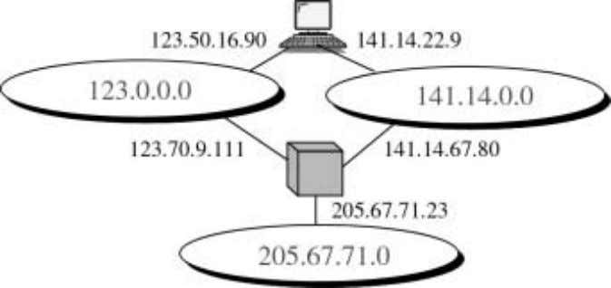 The computer is connected to two networks and hence has two Internet addresses (123.50.16.90 and