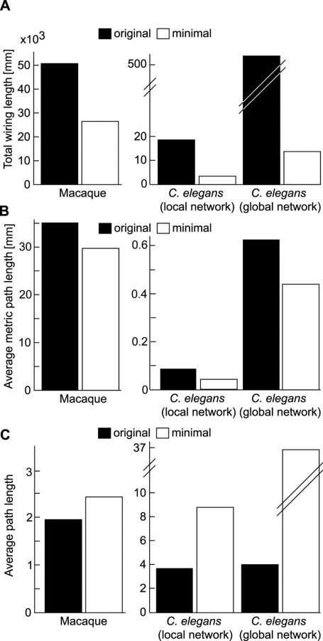 Figure 4. Network Properties of Original Cortical Networks and Minimally Rewired Networks of the Same