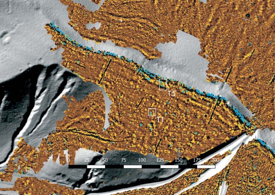 T e Teleac Hillfort in Southwestern Transylvania 183 Fig. 7 Magnetogram superimposed on a LiDAR image
