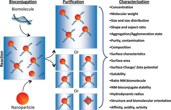 Analytical Chemistry REVIEW Figure 2. Schematic highlighting issues pertinent to the puri fi cation and