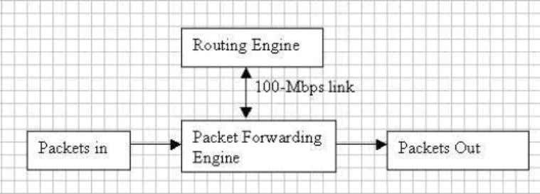 Routing Engine and Packet Forwarding Engine as shown below. 3.1. Routing Engine The Routing Engine is