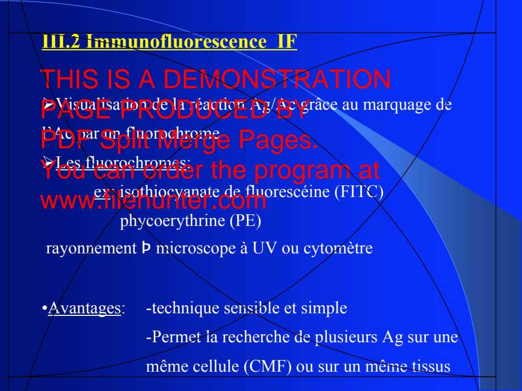 III.2 Immunofluorescence IF THIS IS A DEMONSTRATION PAGE PRODUCED BY ! Visualisation de la réaction