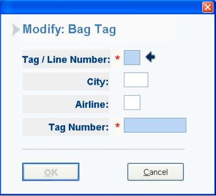 Note: In order to modify a bag tag number, the current work area city /