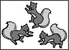 11. Look at the pictures below. Write the number of squirrels you see in the fi