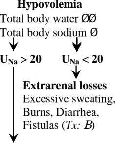 Hypovolemia Total body water ØØ Total body sodium Ø U Na > 20 U Na