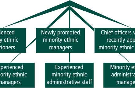 Newly promoted minority ethnic managers Experienced minority ethnic administrative staff