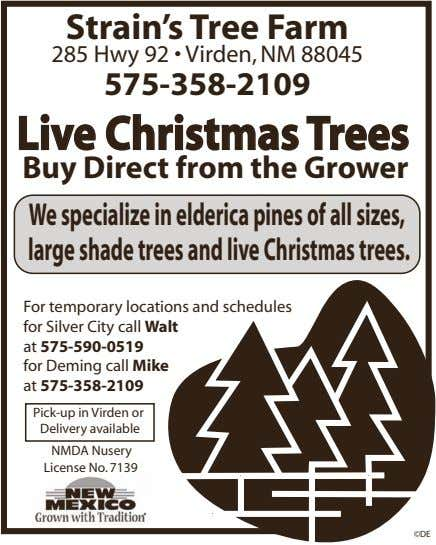 Strain's Tree Farm 285 Hwy 92 • Virden, NM 88045 575-358-2109 Live Christmas Trees Buy