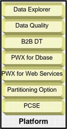 Data Explorer Data Quality B2B DT PWX for Dbase PWX for Web Services Partitioning Option